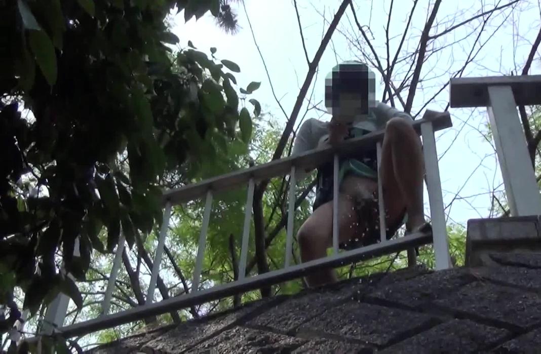 【マジキチ】高低差5m以上の高所から放尿してるまんさんのマジキチ画像よ、集まれwwwwwwwwwwww(画像あり)・7枚目