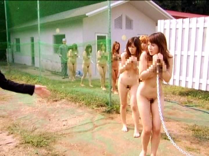 【性奴隷】ワイの自慢のペット紹介するンゴwwwwwwwwwwwwwwwwwwwwwwwwwwwwww(画像あり)・4枚目