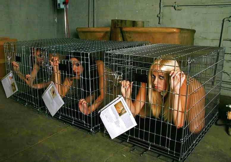 【閲覧注意】裏で売買取引されている世界のメス奴隷達をご覧下さい。。。(画像あり)・9枚目