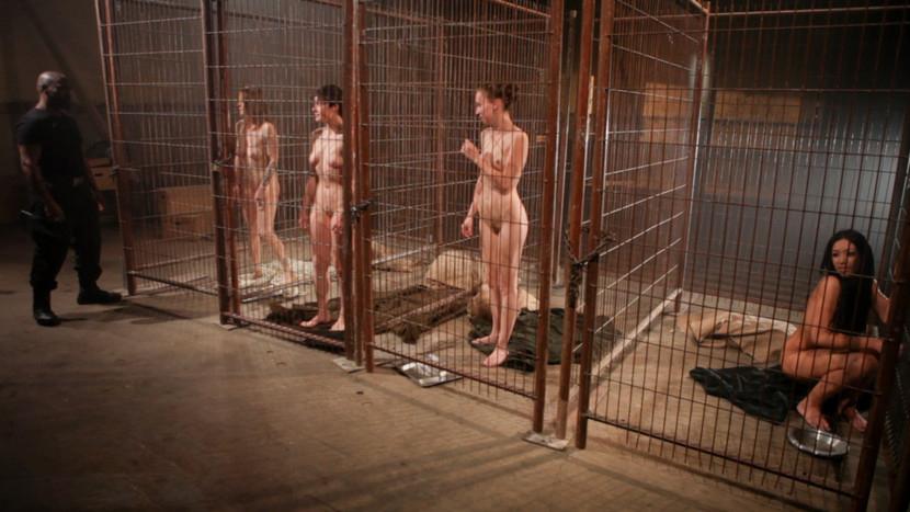 【ガチ胸糞注意】「性奴隷」として競売にかけられる女たちの光景マジでキツ杉・・・(画像あり)・1枚目