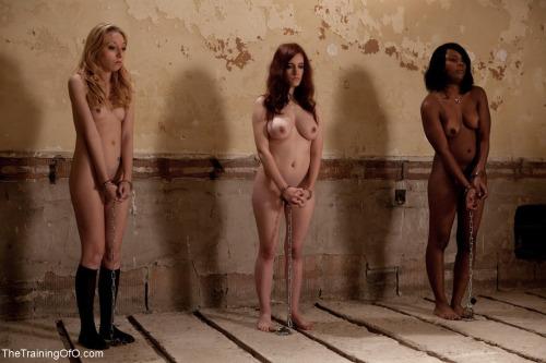 【ガチ胸糞注意】「性奴隷」として競売にかけられる女たちの光景マジでキツ杉・・・(画像あり)・3枚目