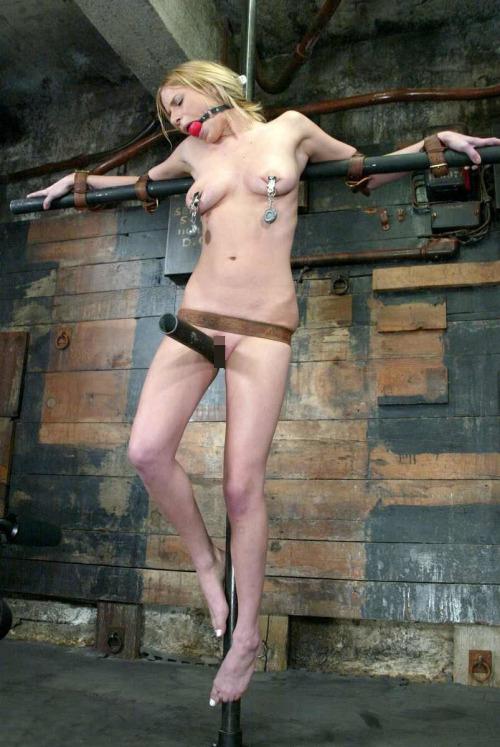 【※生傷注意】「これ拷問??」と勘違いする本場のSMをご覧ください・・・(画像あり)・18枚目