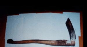 【閲覧注意】インドネシアの少女(18)マンコを破壊され発見される・・・(画像あり)・3枚目