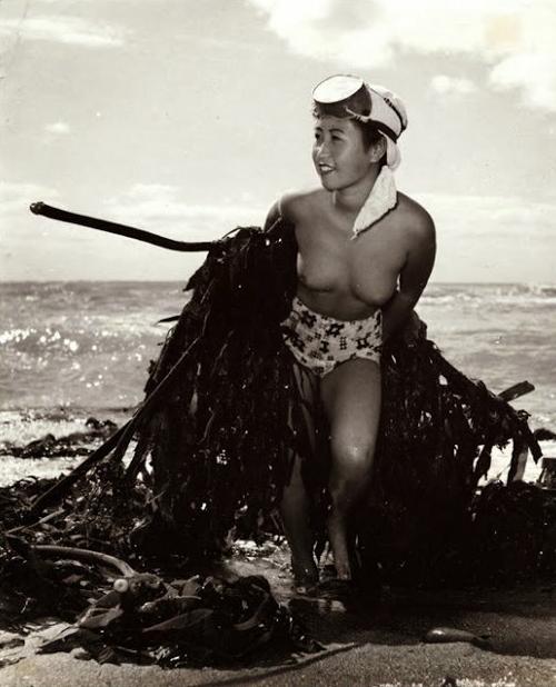 【画像あり】昭和の「海女さん」がお仕事してる写真が発見される。マジかぁwwwwwwwww・10枚目