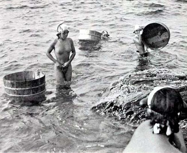 【画像あり】昭和の「海女さん」がお仕事してる写真が発見される。マジかぁwwwwwwwww・16枚目