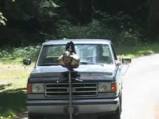 【GIFあり】女を車にくくりつけて暴走するDQNヤバすぎワロタwwwwwwwwww・12枚目