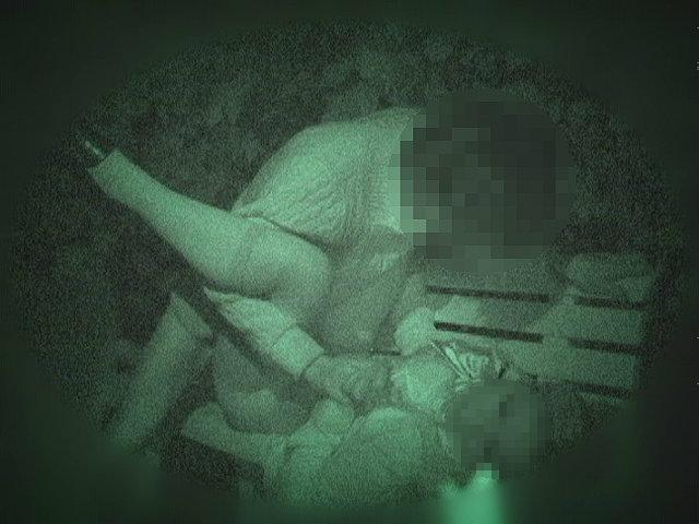 【衝撃】超高性能な赤外線カメラを公園に仕掛けた結果・・・・・(画像36枚)・33枚目