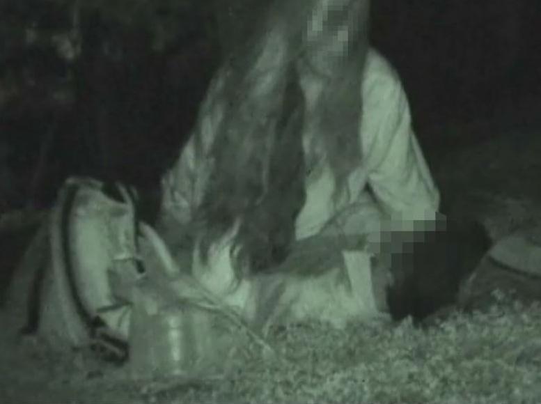赤外線カメラを公園に設置した結果wwwwwww(画像24枚)・1枚目